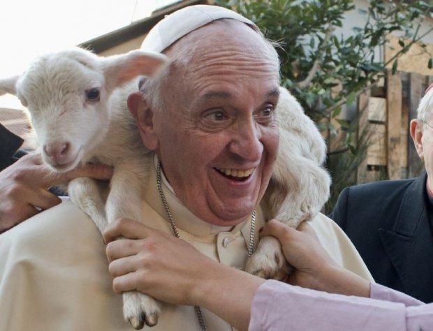 papa francisco meio ambiente